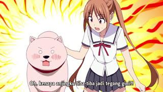 Download Aho Girl Episode 08 Subtitle indonesia