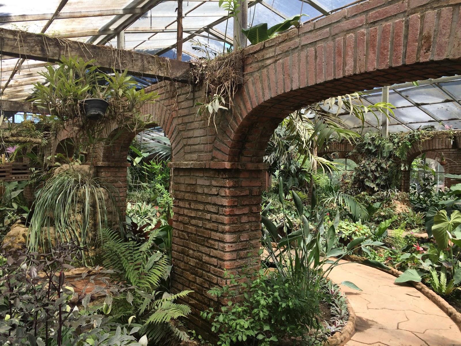 Neuve meses en cochabamba for Jardin botanico nocturno 2016