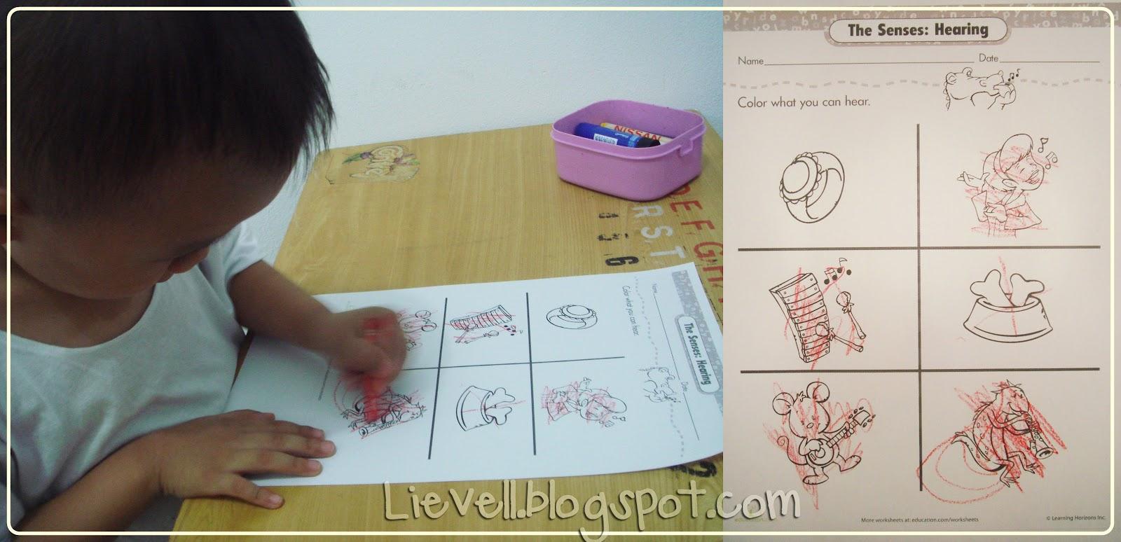 Preschool Doc Mcstuffin Amp Human Body