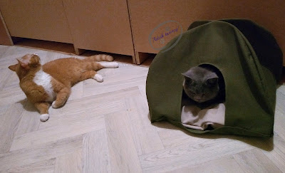 namiot diy dla kota