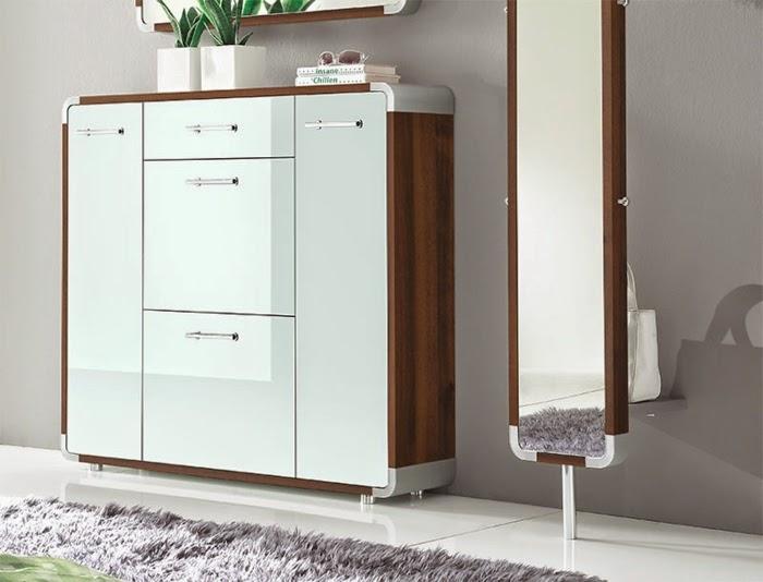 Stylish Gloss White Shoe Storage Cabinet Ideas For Modern