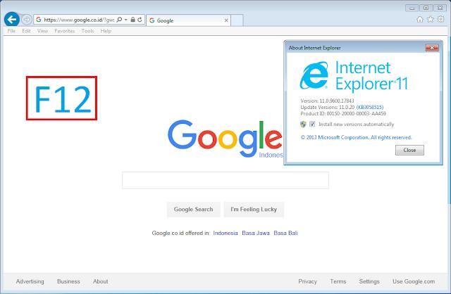 Internet explorer 11 on a mac catch-up us
