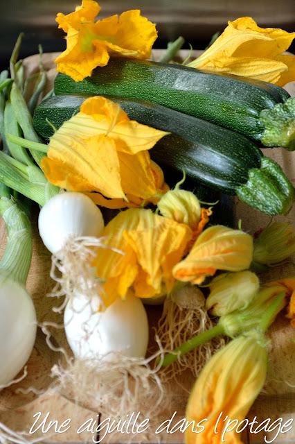 courgettes et fleurs de courgettes