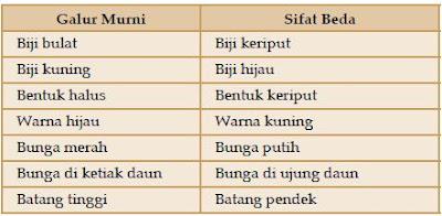Tabel Tanaman Galur Murni