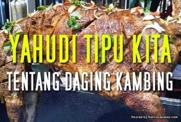 Khasiat daging kambing