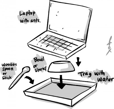 remove laptop computer ants