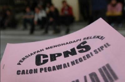 Berikut 141 Daerah Telah Ajukan Usulan Kebutuhan CPNS 2017