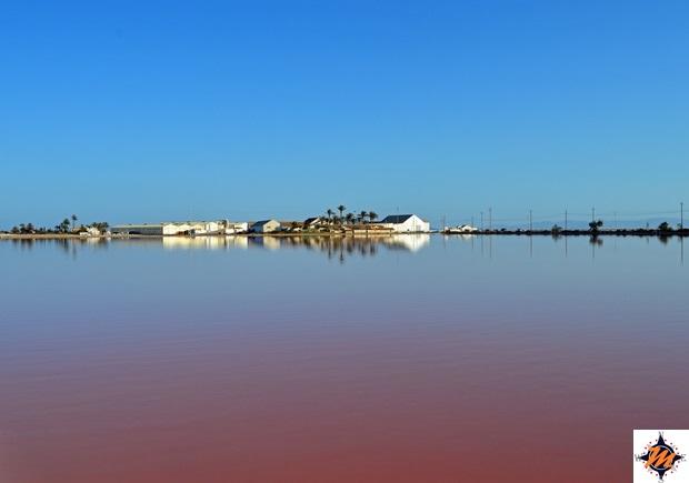 Parque Regional Salinas y Arenales di San Pedro del Pinatar