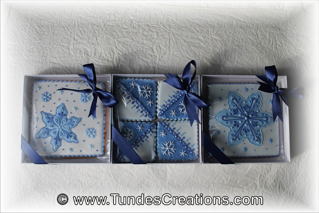 Square cookie gifts with TruColor by Tunde Dugantsi