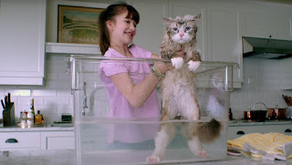 Nine Lives Kevin Spacey in children cat comedy