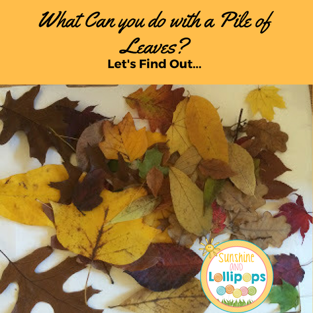 There are so many things that YOU can do with a pile of leaves whether teaching from home or school. I have listed 11 of my all time favorites,but #6 and 9 are definitely on the top of the list! Let's bring Science to life!!