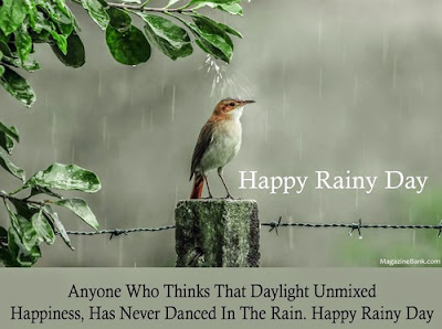 happy-blessed-rainy-day-quotes