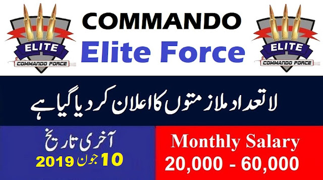 Jobs in Elite Force Govt Of Pakistan | Elite Force Latest Jobs 2019
