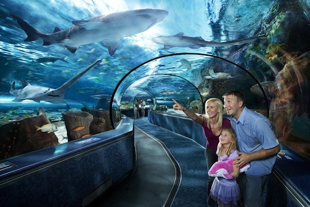 Ripley's Aquarium of toronto - Canada - tickets and hours