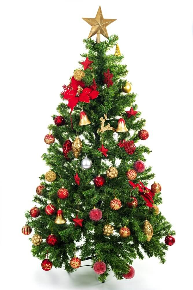 Images of Decorated Christmas Trees
