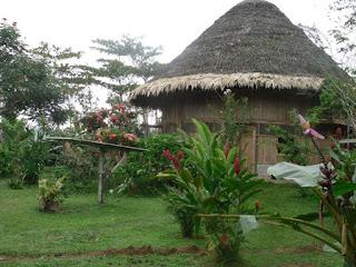 Turismo verde o sostenible en Costa Rica Yorkin