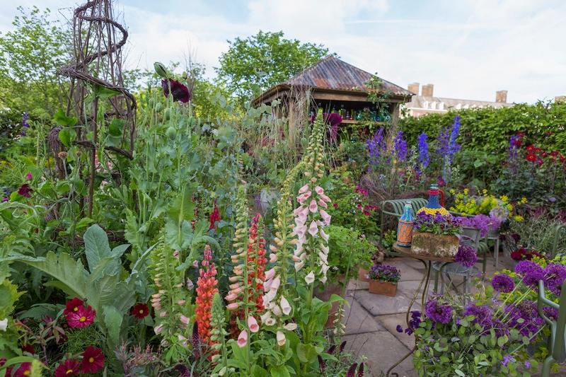 The Anneka Rice Colour Cutting Garden RHS Chelsea Flower Show