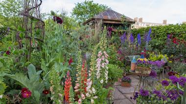 Color y un jardín de flores para corte en Chelsea Flower Show