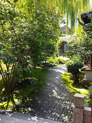 HIdden pathway at Chinese Garden of Friendship Darling Harbour