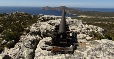Kanonkop to Cape Point