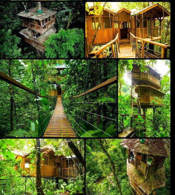 Costa Rica Treehouse Finca Bellavista