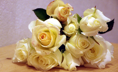 white roses on October day