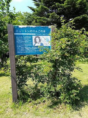 ぐんまフラワーパーク ニュートンのりんごの木