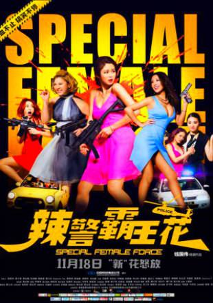 Poster of Special Female Force 2016 BRRip 720p Dual Audio In Hindi Chinese ESub