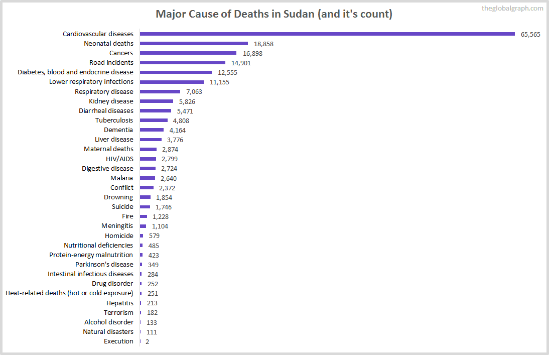 Major Cause of Deaths in Sudan (and it's count)