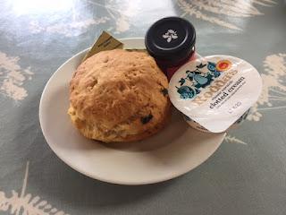 Bodnant Garden scone