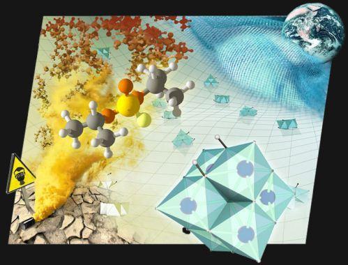 Senyawa polyoxoniobates