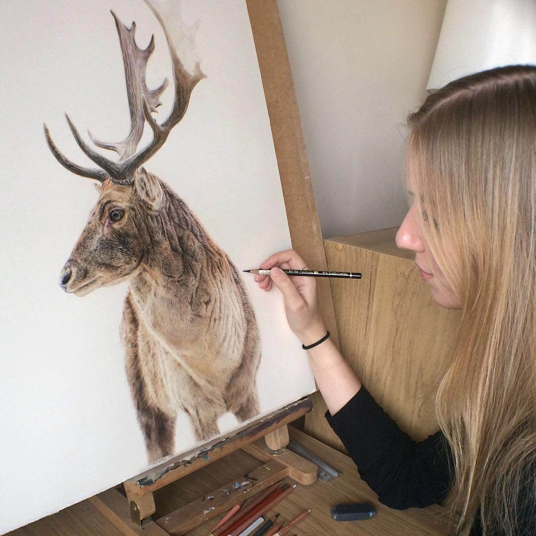 04-Stag-Danielle-Fisher-Realistic-Animal-Portrait-Pastel-Drawings-www-designstack-co