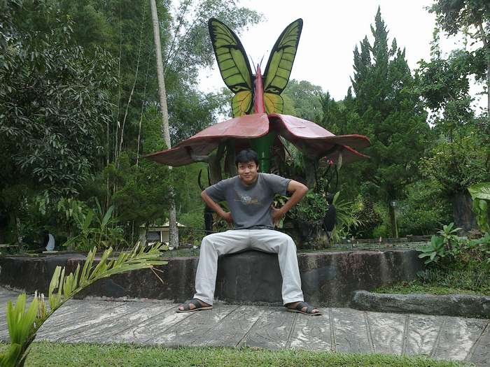 Butterfly sculpture in Bali Butterfly Park
