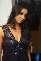 Sanjana looks happy in sparkling short Deep neck Purple Gown ~  Exclusive 17.JPG