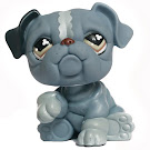 Littlest Pet Shop 3-pack Scenery Bulldog (#668) Pet