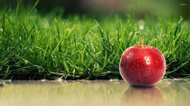 foto apel merah