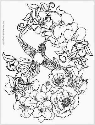 sparrow bird coloring pages for adult printable