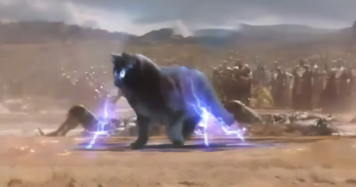 Adorable Cat Goes Viral By 'Starring' In Popular Hollywood Films