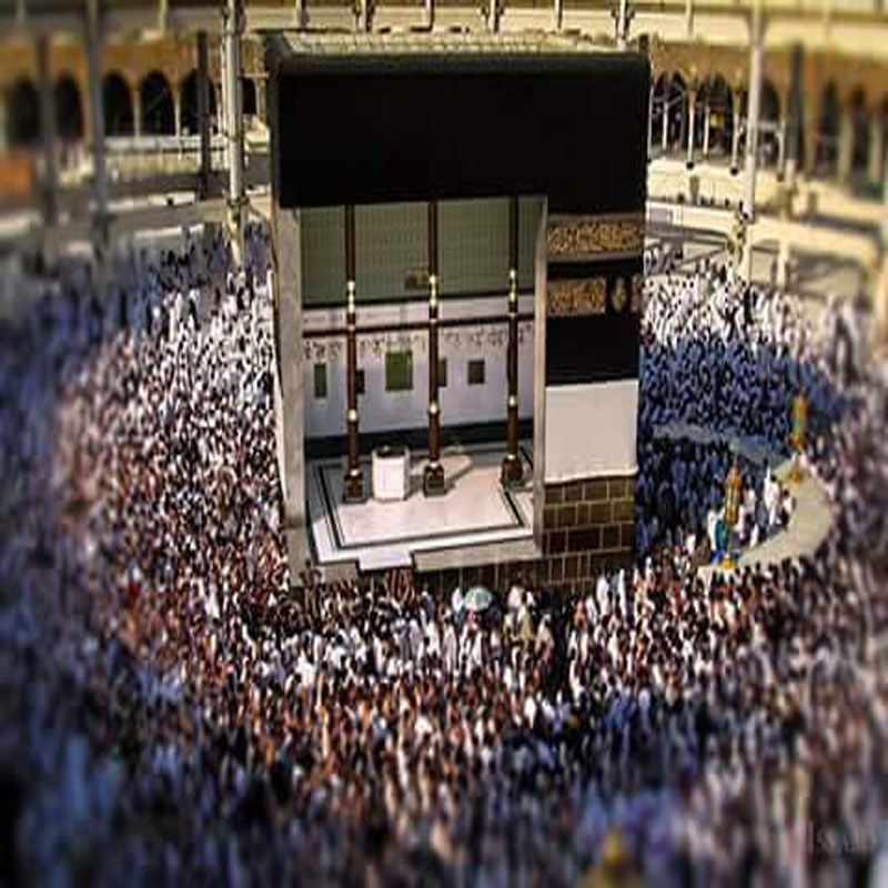 Umrah Banner: Affordable Hajj And Umrah Packages: Difference Between