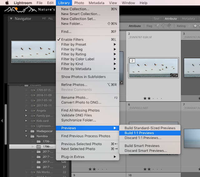 Selecting images and building previews in Lightroom