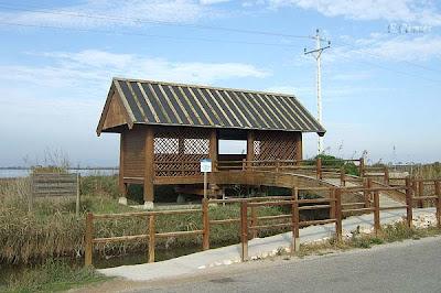 Observatori nº 1 - Llacuna de la Tancada