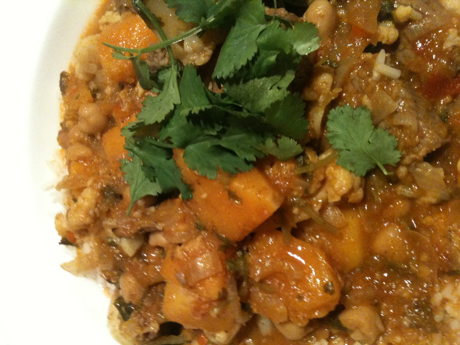 Lisas Little Library Jamie Olivers Curry Rogan Josh With