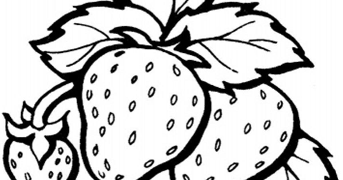 Mewarnai Buah Strawberry Mewarnai K