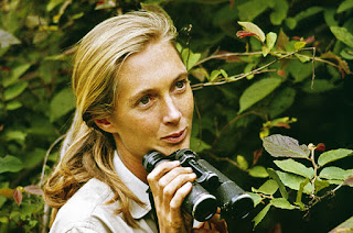 Jane Goodall David Attenborough's Life Stories Episode 2 Understanding the Natural World PBS Nature