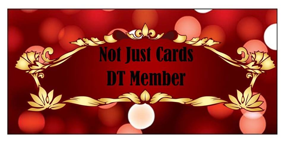 Proud to be a DT Member at Not Just Cards