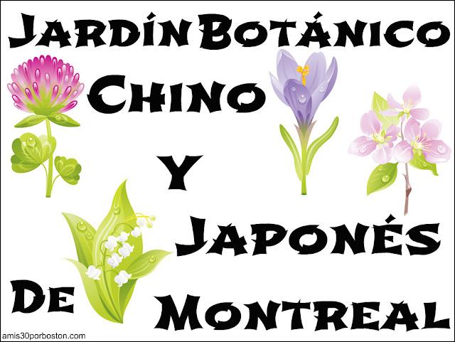 Jardín Botánico Chino & Japonés de Montreal