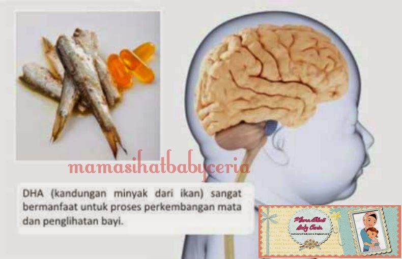 12 Khasiat Minyak Ikan untuk Kesehatan