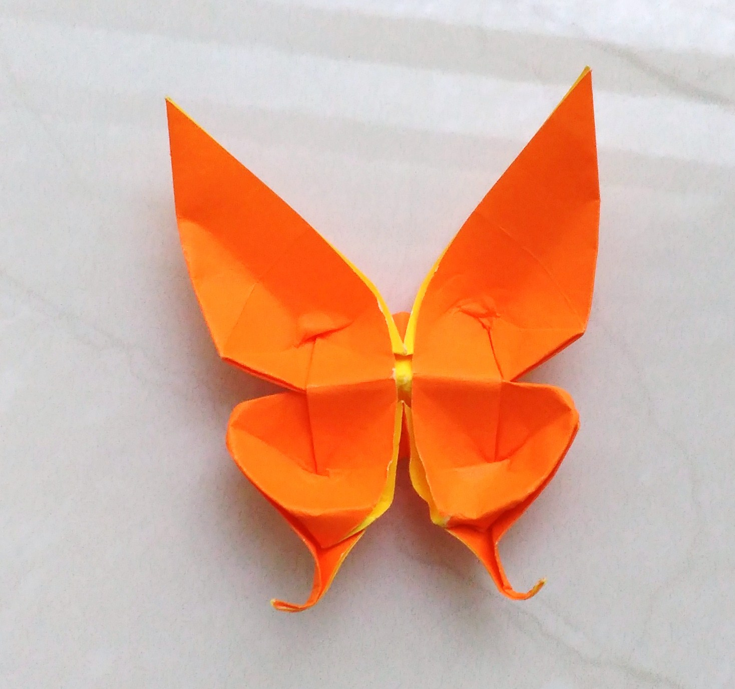 Origami Swallow Tail Butterfly