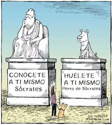 Sócrates, conócete a ti mismo, el perro de Sócrates, huélete a ti mismo