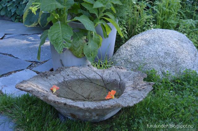 Vannbad i betong